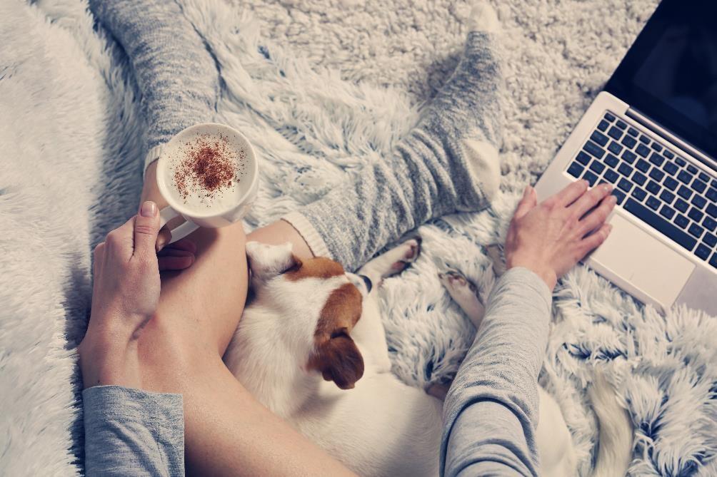 Albina Glisic by Shutterstock.jpg pakattu