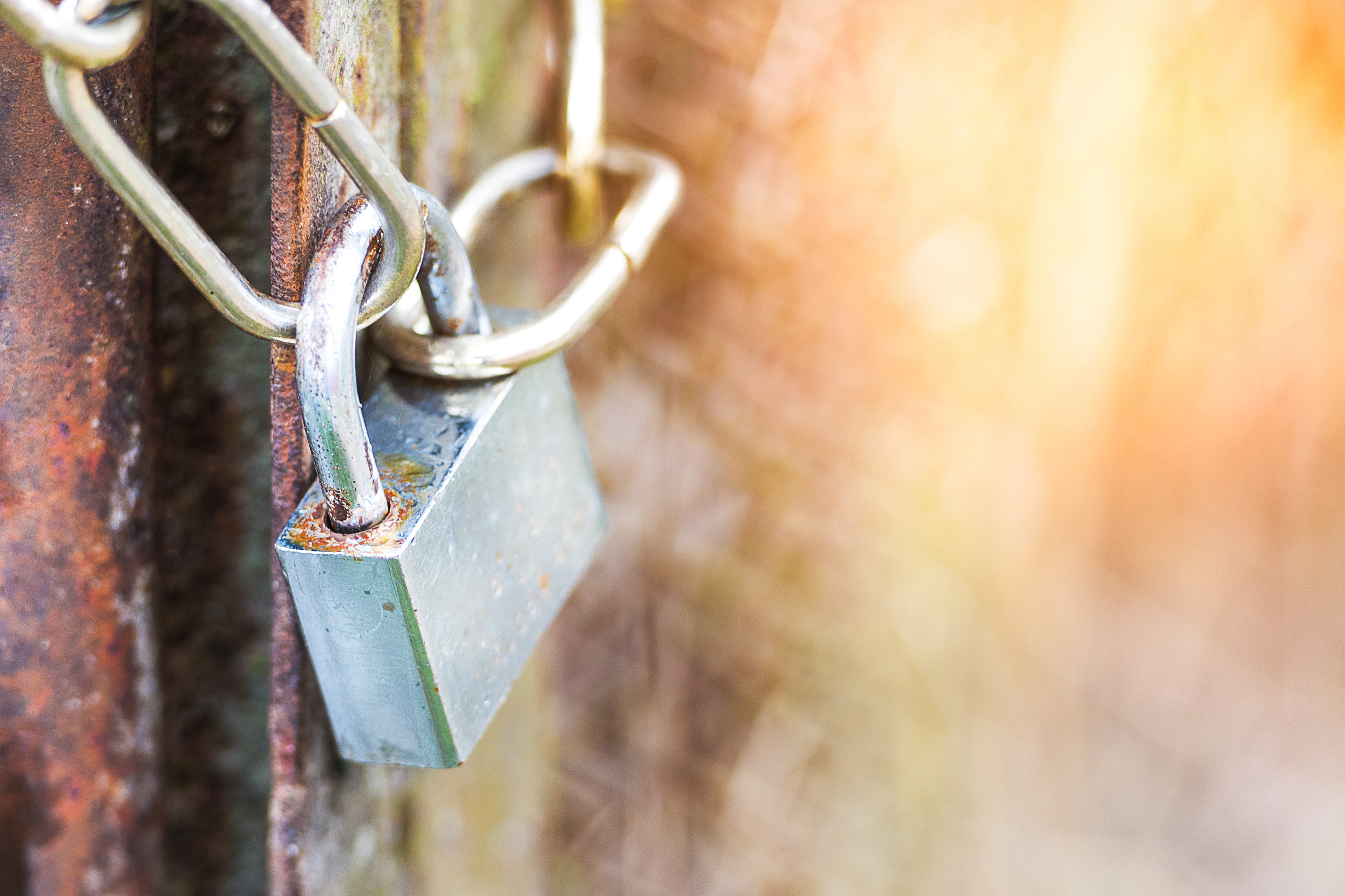 Anna Nikonorova by Shutterstock payment security, fence locked with a chain