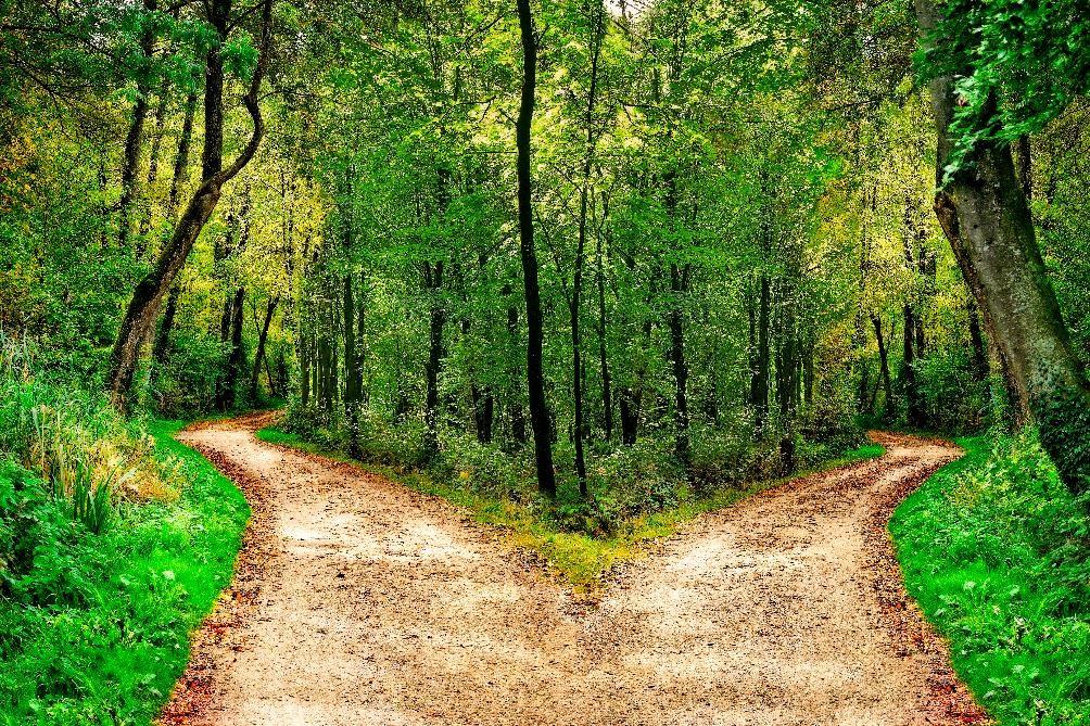 gopixa by Shutterstock segregation of duties, path going two ways